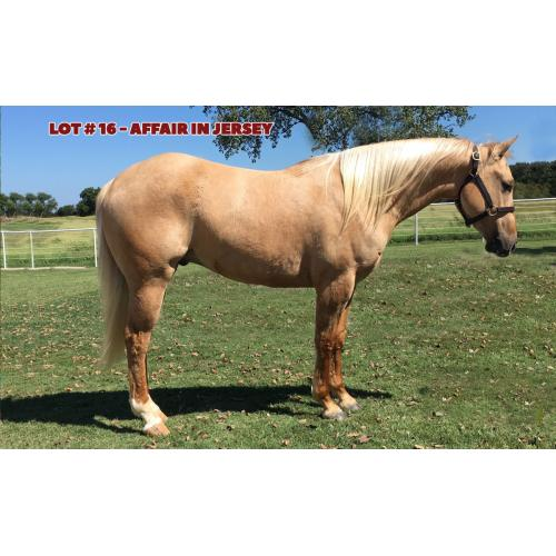 LOT 16 - AFFAIR IN JERSEY