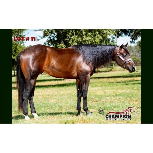 LOT 11 - THE GREATEST SHOWMAN