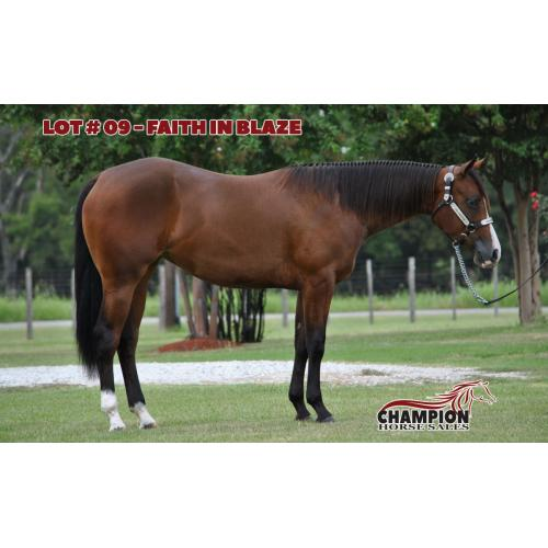LOT 09 - FAITH IN BLAZE